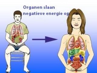 Energeën in organen - image